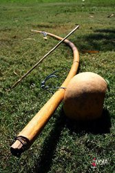 The berimbau is the principle instrument of capoeira